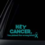 TEAL Ribbon You Picked Wrong BITCH Ovarian Cancer Car Decal / Sticker