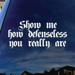Show Me How Defenseless You Really Are Song Lyrics Band Car Truck Laptop Sticker Decal 6