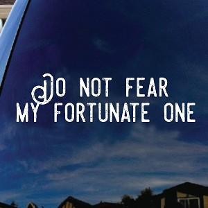 "Do Not Fear My Fortunate One Song Lyrics Band Car Truck Laptop Sticker Decal 6"" Wide"
